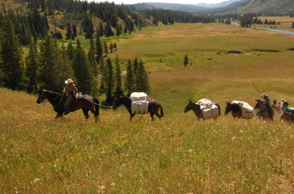 Yellowstone packstring 1