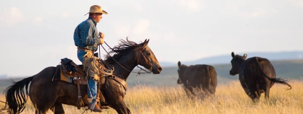 Comrade Cowboy, Part 1
