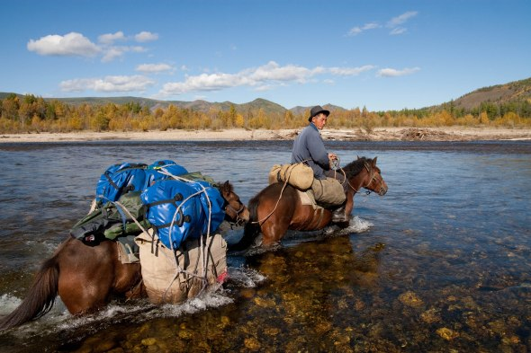Tsogt, the head wrangler for a Fish Mongolia expedition, fords the Uur River with a packhorse.